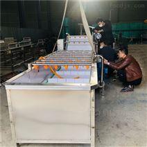 蔬菜清洗機秋葵氣泡凈洗設備塑料模塊鏈板
