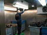 上海环保垃圾冷库建造成本多少钱