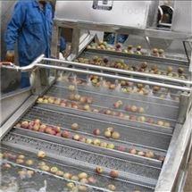 包菜毛豆荠菜甘蓝菜气泡清洗机