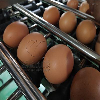 XDJ-1诸城明超鲜鸡蛋清洗光检风干线每小时5000枚