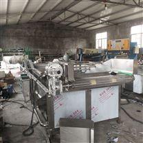 果蔬加工厂水果气泡清洗机
