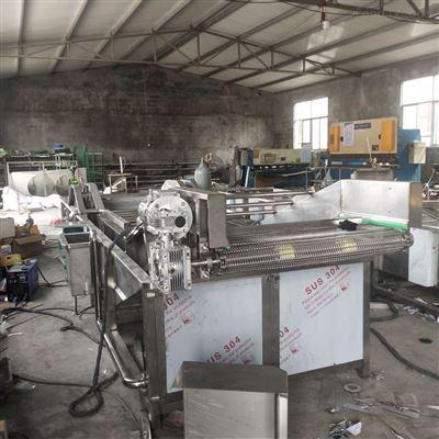 800型果蔬加工厂水果气泡清洗机