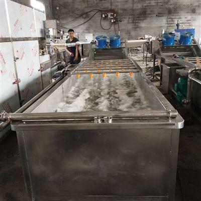 全自动不锈钢多功能水果蔬菜清洗机