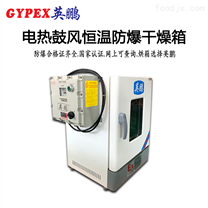 北京防爆恒温鼓风干燥箱130升 电子厂