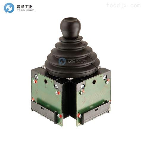 W.GESSMANN控制器V14.1L-01ZC-A05C66