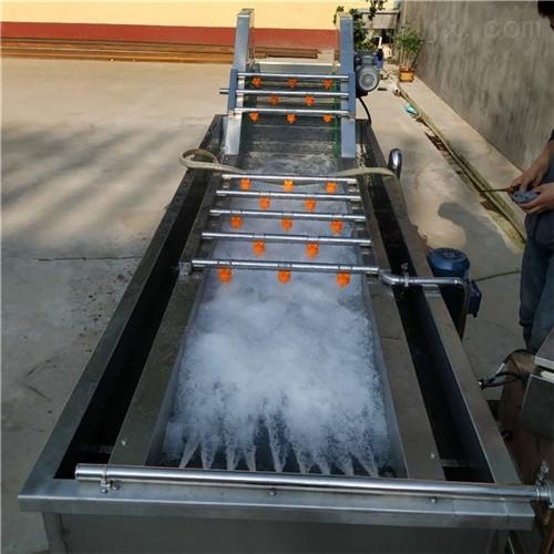 全自动果蔬清洗生产流水线