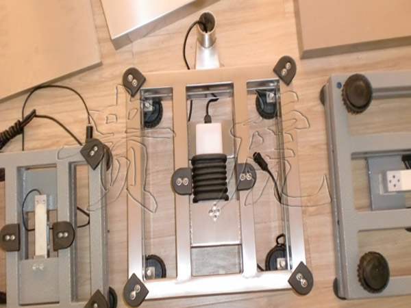 不锈钢防腐电子秤