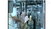 牛羊屠宰流水线厂家牛羊屠宰设备